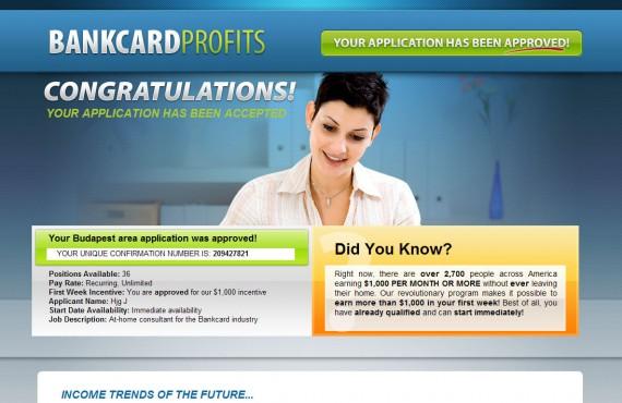 bankcardprofitsystem screenshot 3