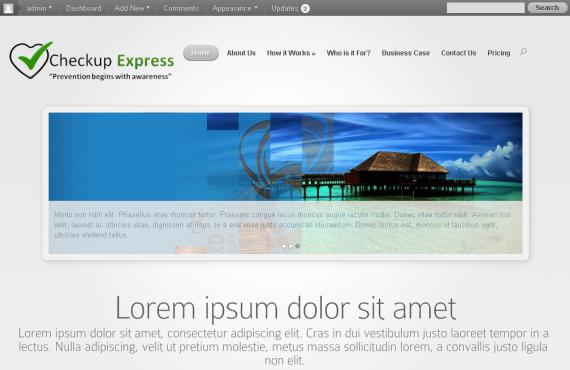 wordpress premium theme customization screenshot 1