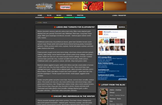 development of ahangerooz website screenshot 2