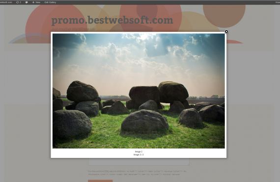 wordpress gallery plugin screenshot 4