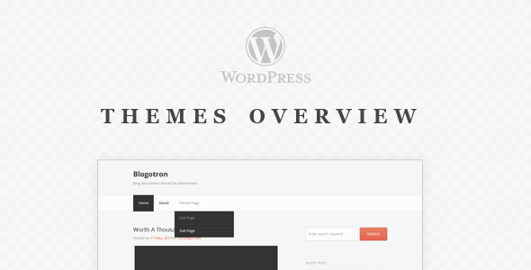 05-wp-themes-overview