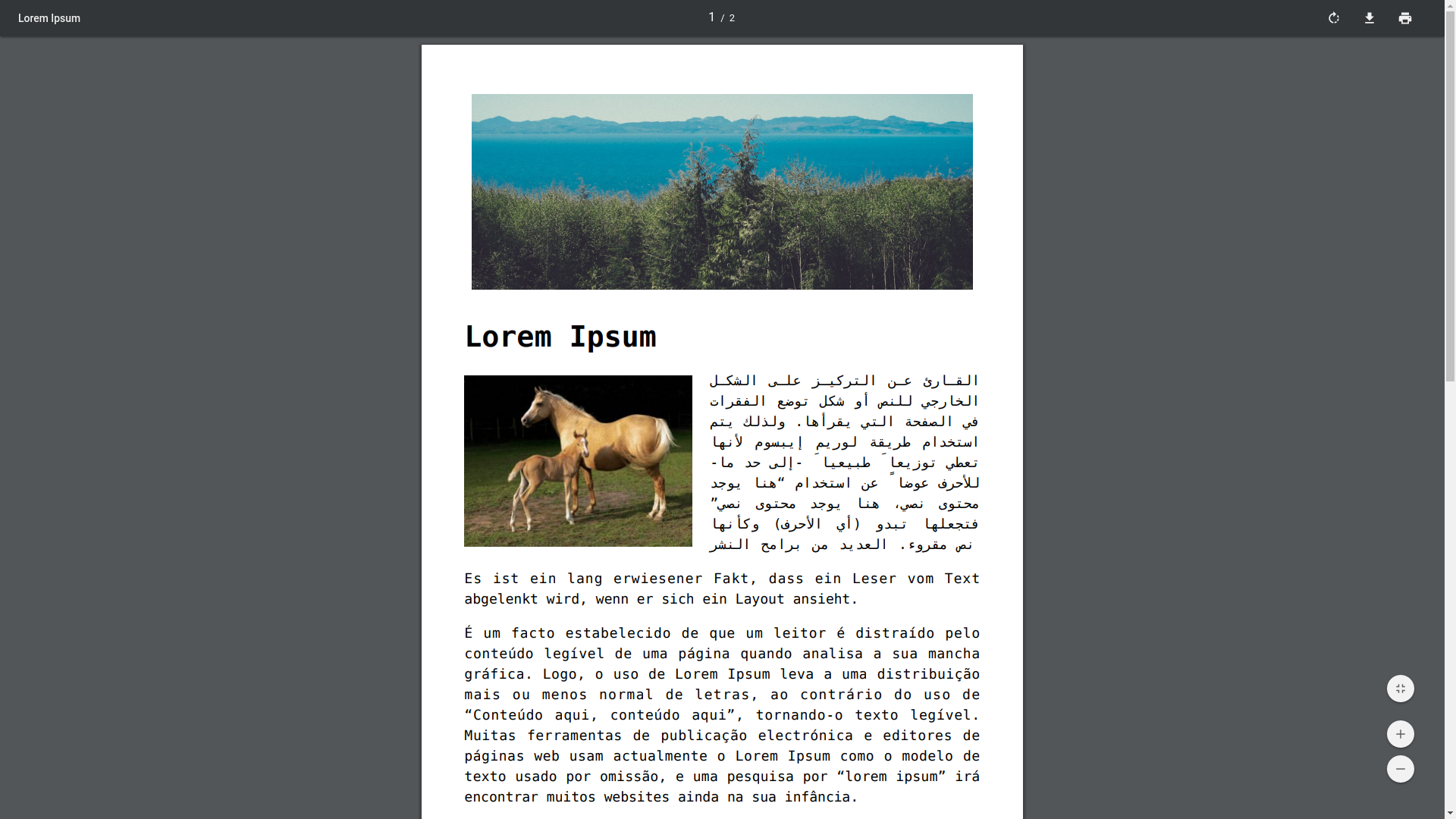 pdf & print screenshot 5