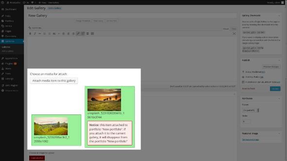 Re-attacher plugin work with Gallery plugin.
