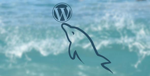 installing-multiple-websites-into-a-single-mysql-database