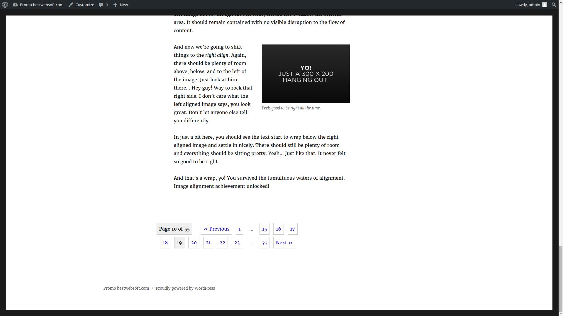 pagination screenshot 1