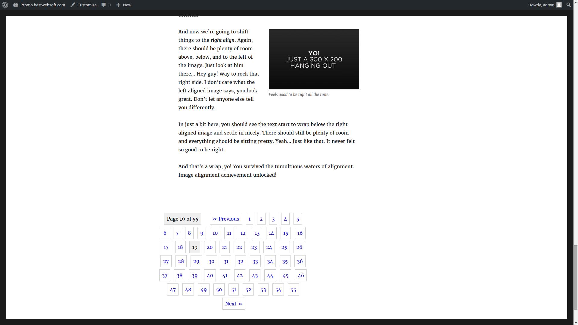 pagination screenshot 2