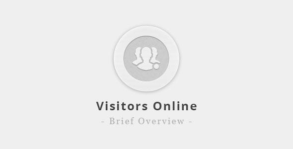 visitors-online-brief-overview