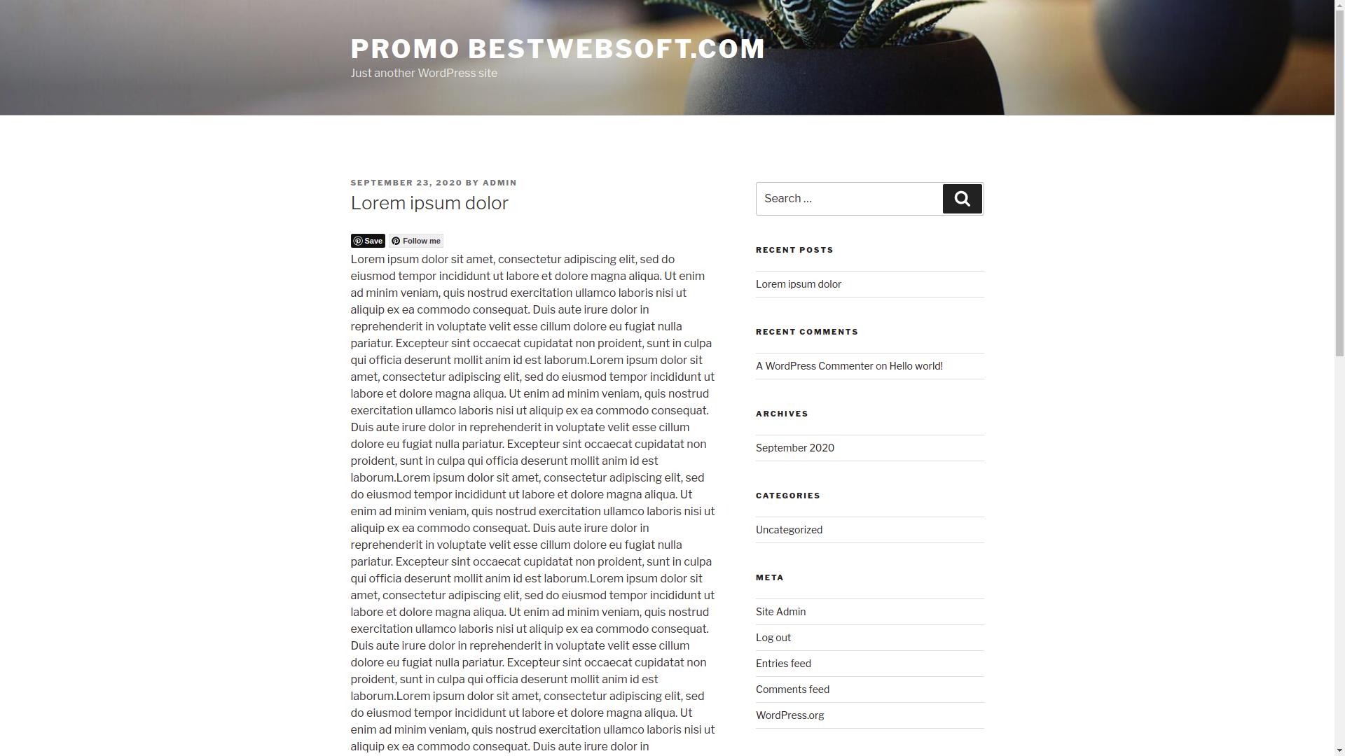 bestwebsoft's pinterest screenshot 4