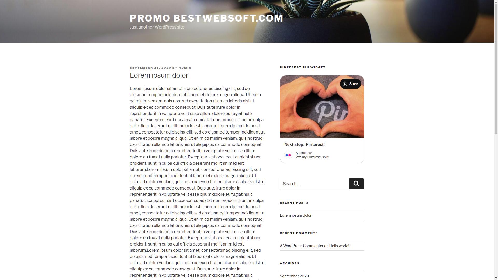 bestwebsoft's pinterest screenshot 5