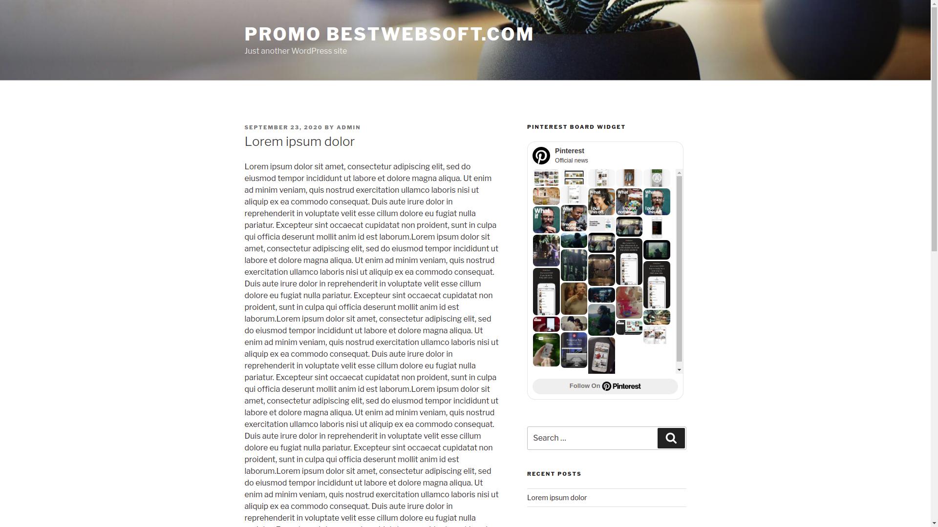 bestwebsoft's pinterest screenshot 6