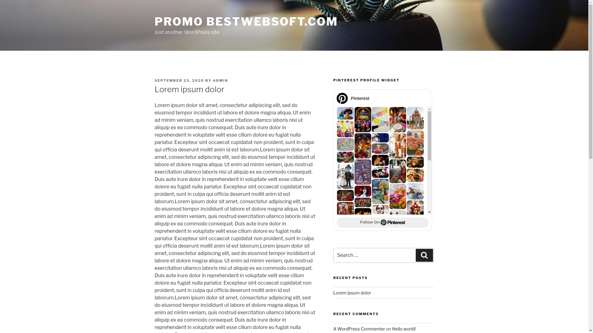 bestwebsoft's pinterest screenshot 7