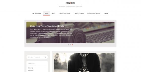 central – cheap wordpress theme screenshot 1