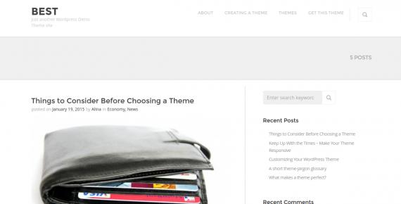 best – cheap wordpress theme screenshot 1