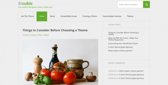 bicubic – cheap wordpress theme screenshot 1