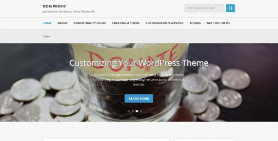non profit – cheap wordpress theme screenshot 1
